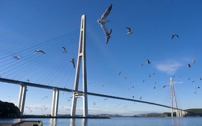 BRIDGES OF VLADIVOSTOK
