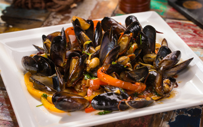 MUSSELS FESTIVAL