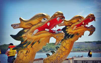 Dragons in Vladivostok
